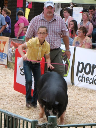 Kedron showing Berk gilt 58-7 at 2013 STC