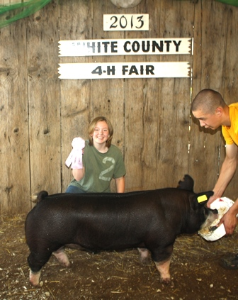 2013 Reserve Champion Berkshire Barrow, White County Fair, IN (Walter x Time Out)